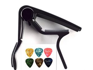 Popular Guitar Accessory