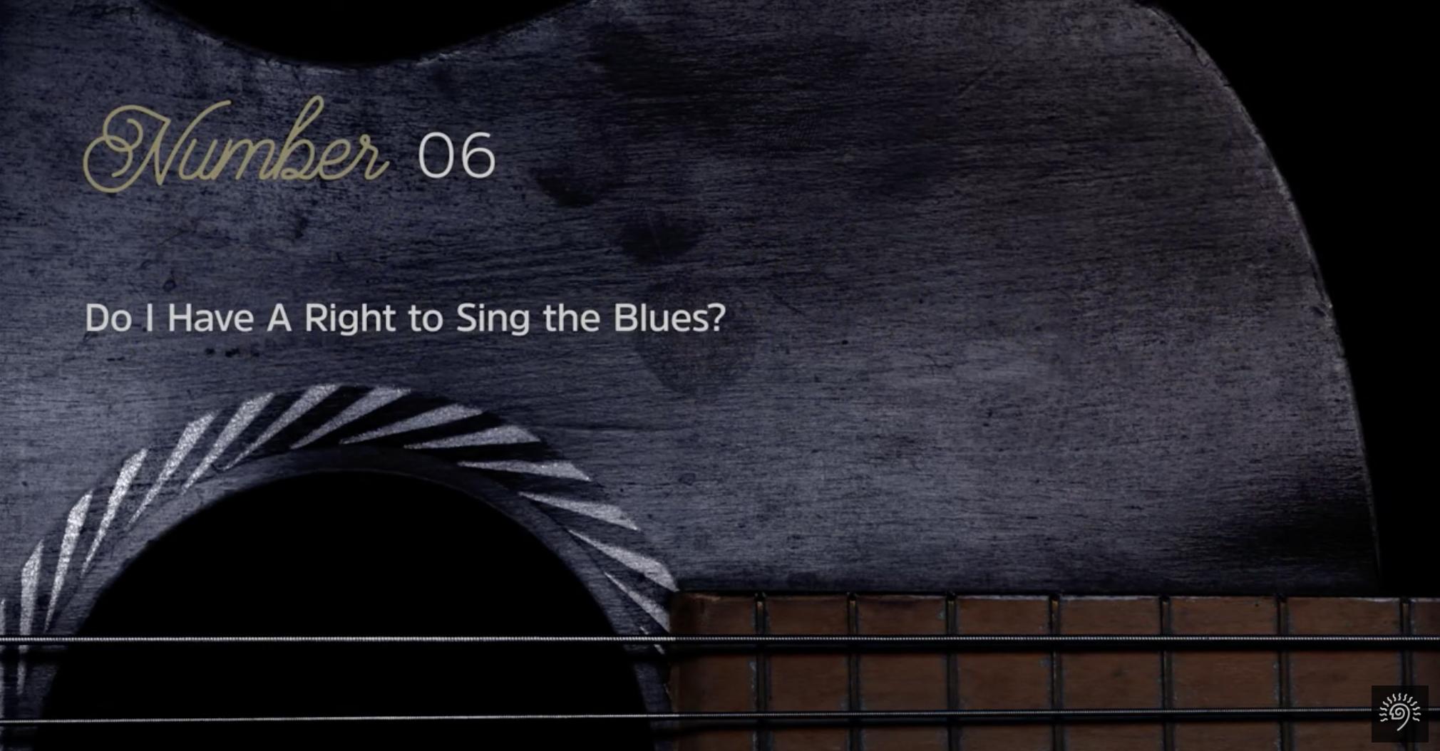 Blues Chronicles 6